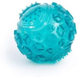 Squeaker Ball - Teal
