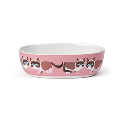 "Grumpy cat Mildly amused 7"" 2 cups Pink"