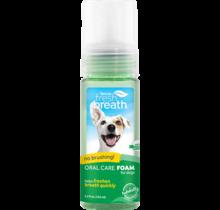 Fresh Breath Foam 4.5oz