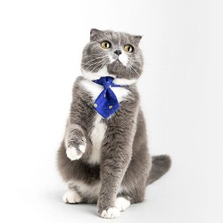 Pet Necktie