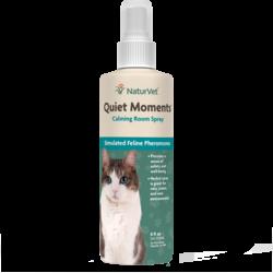 Quiet Moments Cat 8oz