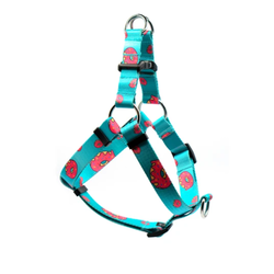Step in Harness Five-O