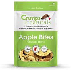 Apple Bites 1.6oz