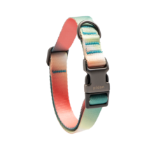 Pidan Dog Collar Pink to Green Color Gradient Style