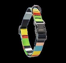 Pidan Dog Collar Color Stripes Style
