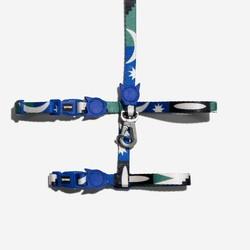 Copy of Split Harness + Leash Set