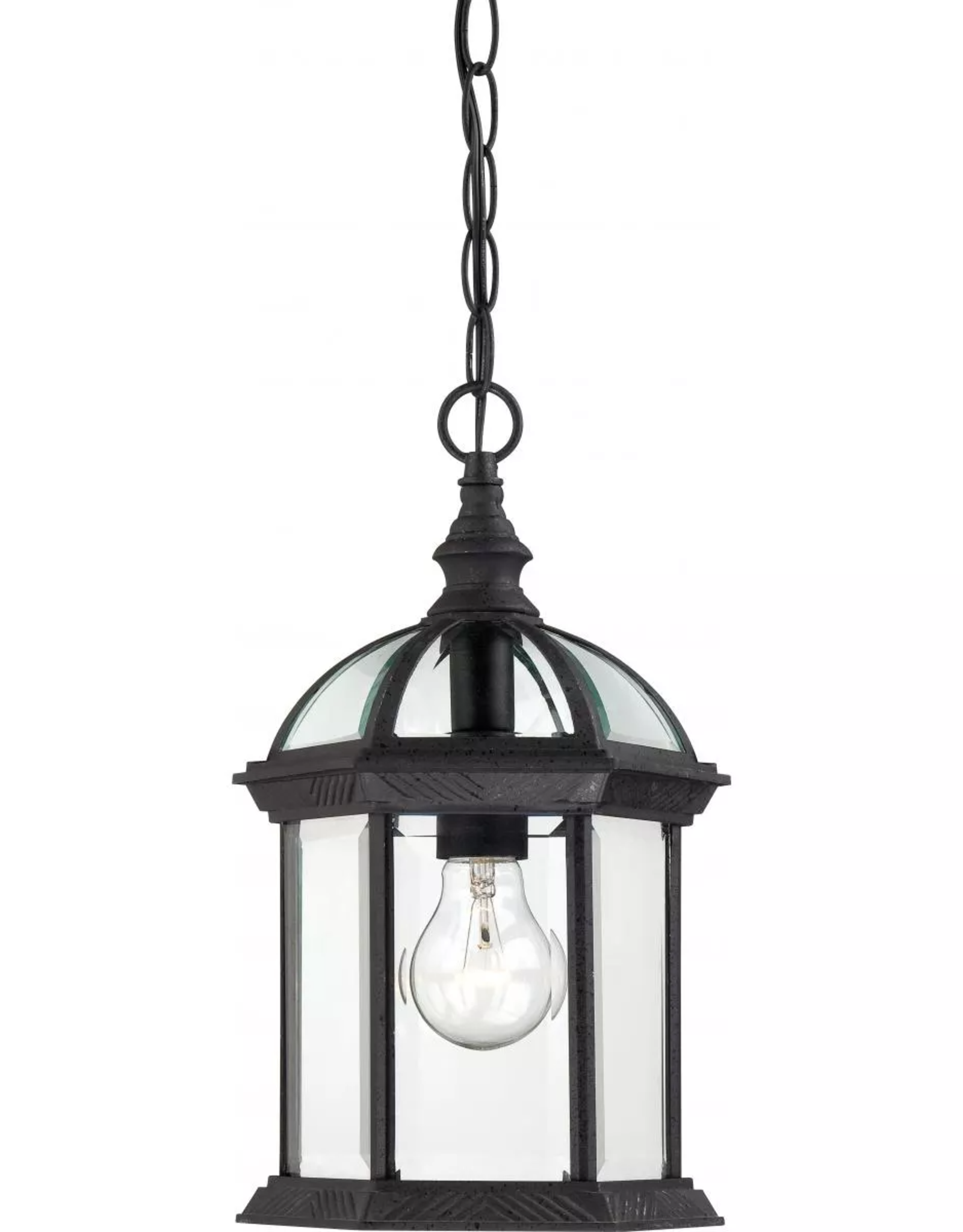"""Nuvo Lighting Nuvo Lighting Boxwood Single Light 8"""" Wide Outdoor Mini Pendant with Clear Glass Shade"""