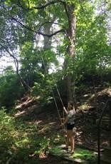 High Limb 48 in. Manual Chain Saw