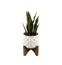 Flora Bunda 12.5 in. Faux Snake Plant in White Dimple Pattern Ceramic Pot on Wood Stand