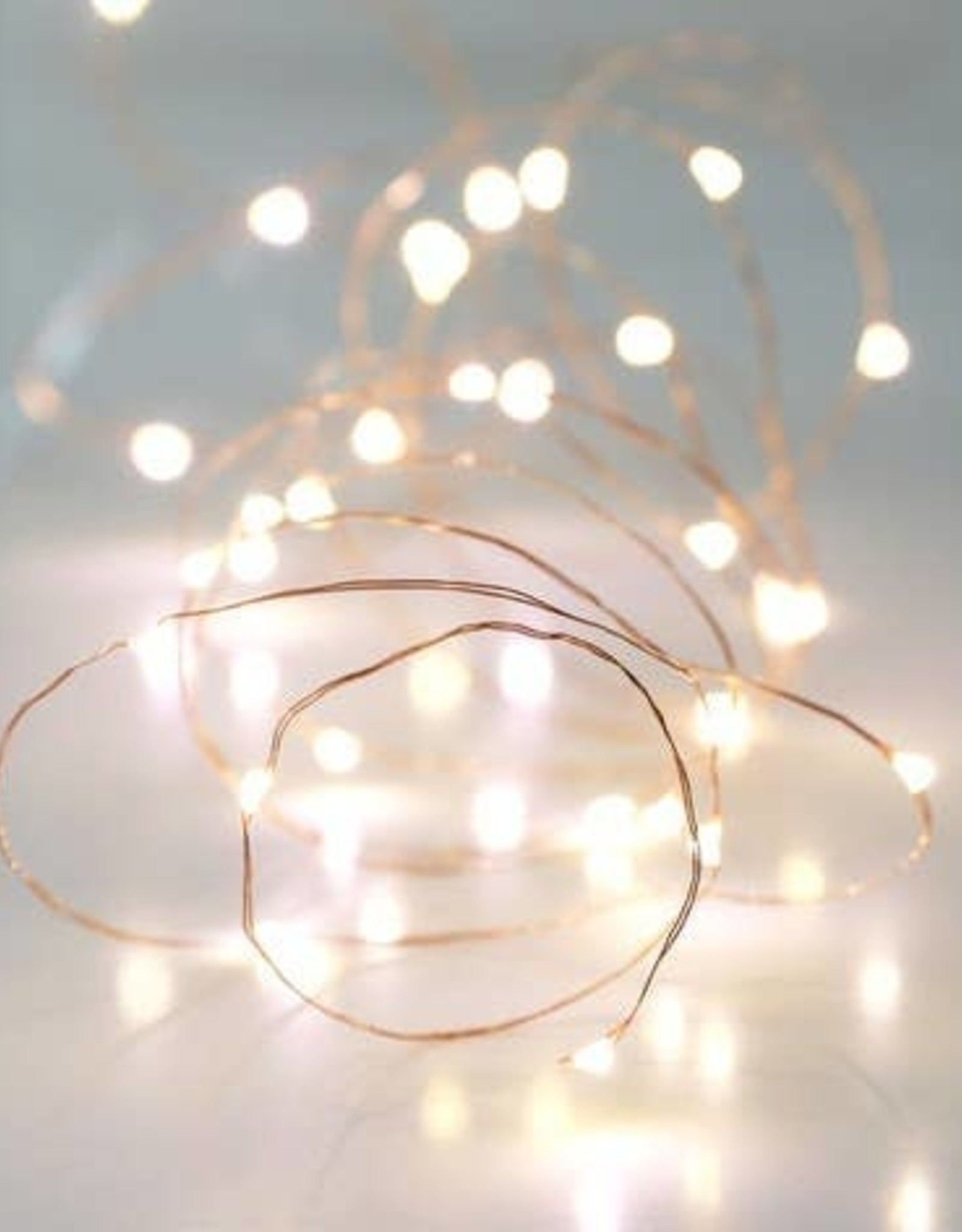 Lisa Angel 30 Battery Powered Led Copper Wire String Lights