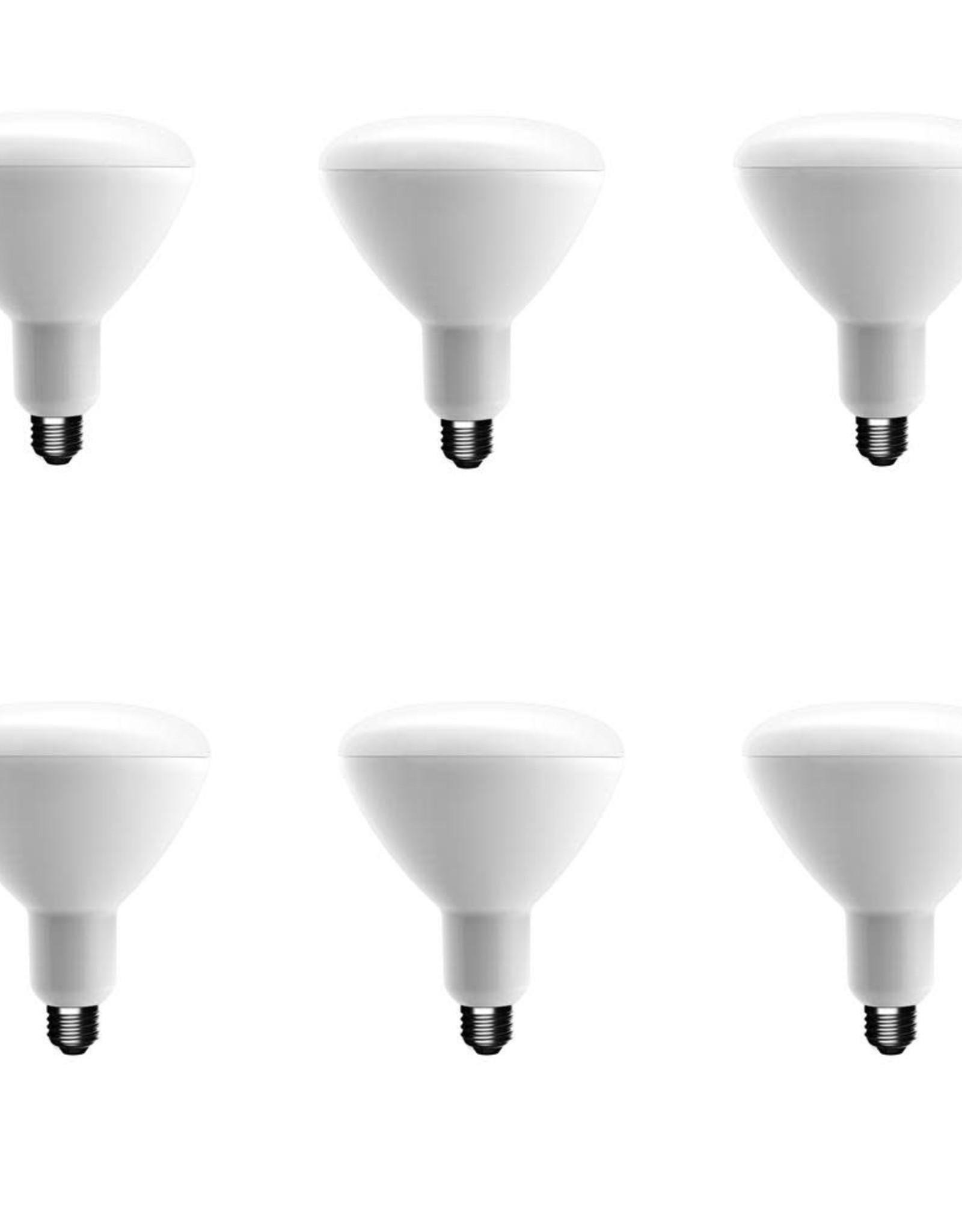 EcoSmart 75-Watt Equivalent B