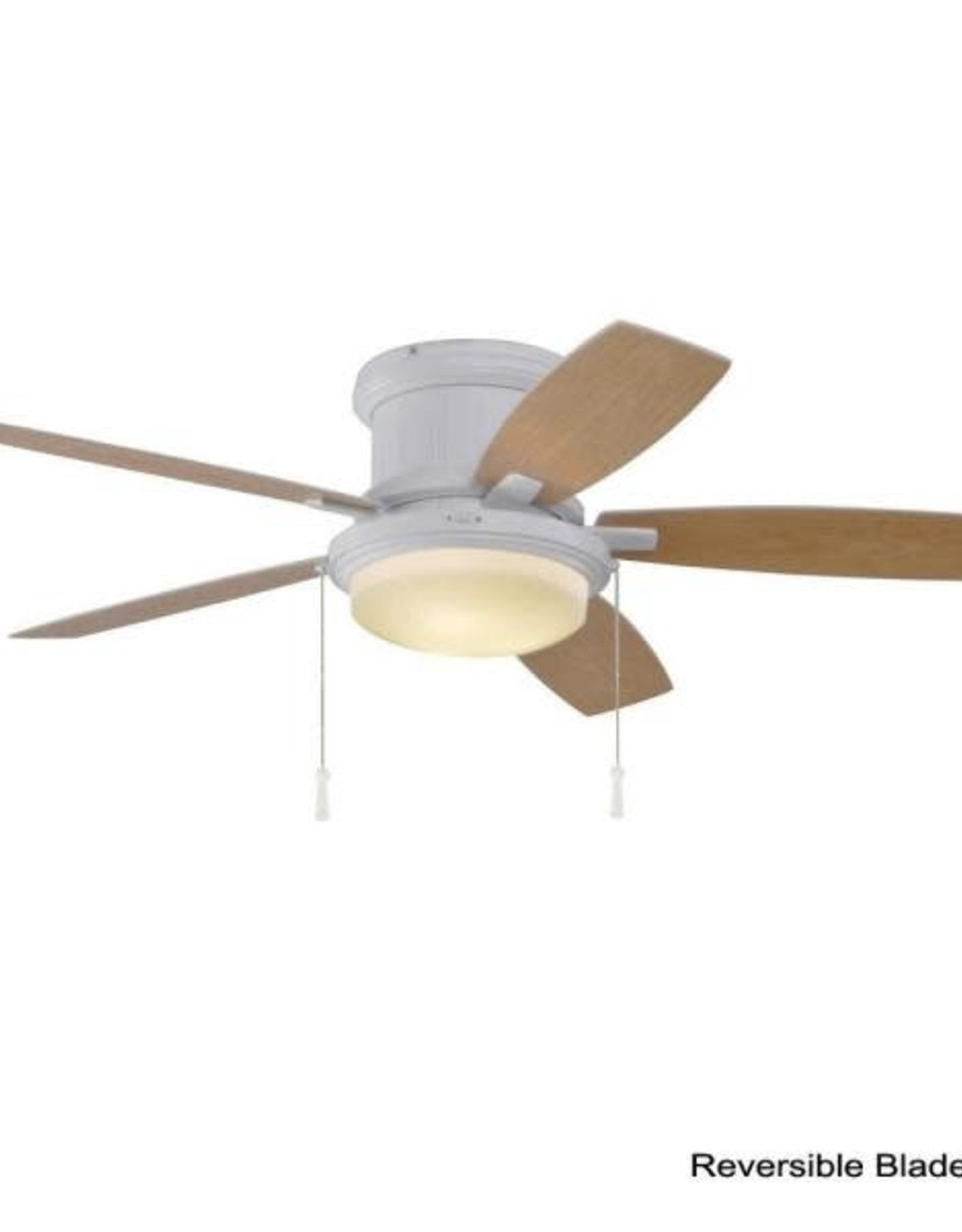 Hampton Bay Roanoke 48 in. LED Indoor/Outdoor Matte White Ceiling Fan with Light Kit