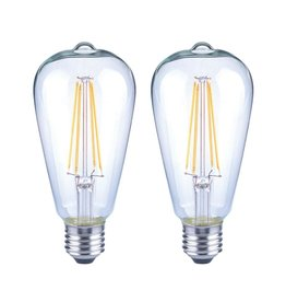 EcoSmart 75-Watt Equivalent ST19 Antique Edison Dimmable Clear Glass Filament Vintage Style LED Light Bulb Soft White (2-Pack)