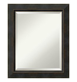 Amanti Art Signore 21 in. W x 25 in. H Framed Rectangular Bathroom Vanity Mirror in Bronze