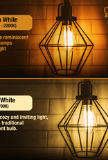 Feit Electric 60-Watt Equivalent ST19 Dimmable Amber Glass Vintage Edison LED Light Bulb With Straight Filament Warm White (4-Pack)