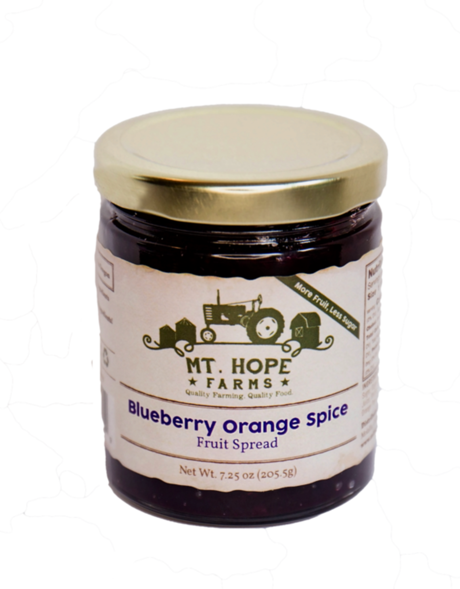 Blueberry Orange Spice Fruit Spread