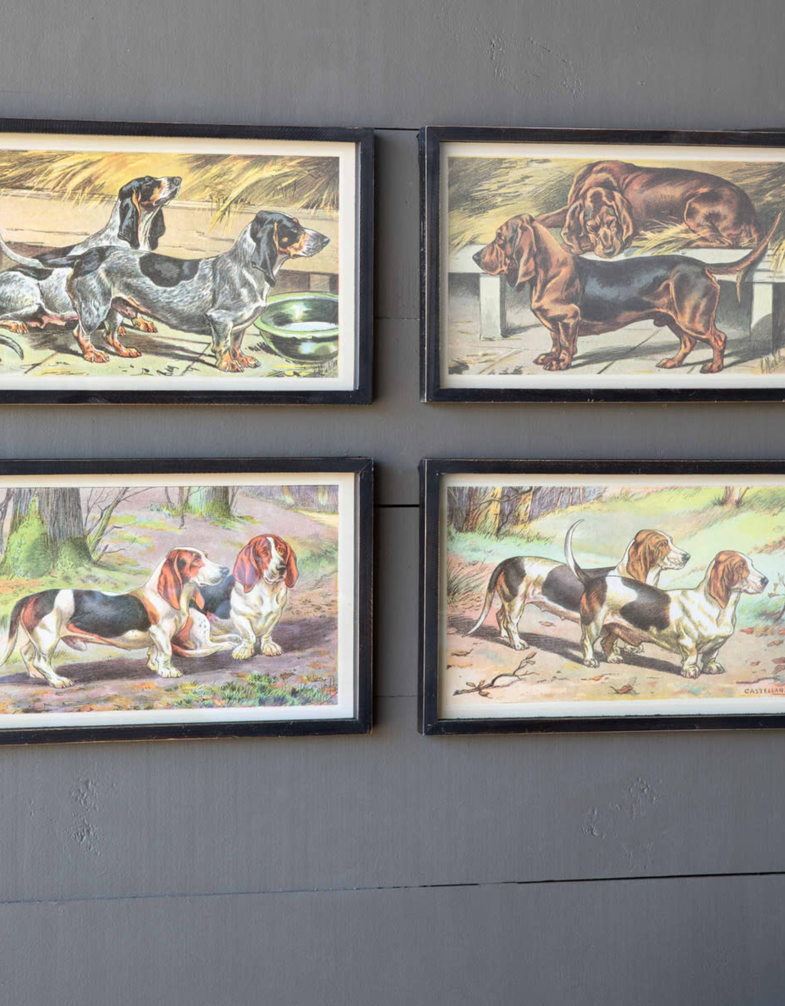Park Hill Collection Park Hill Short Hound Framed Prints