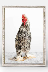 Greenbox Art Greenbox Charming Chickens Blk/Wht Canvas