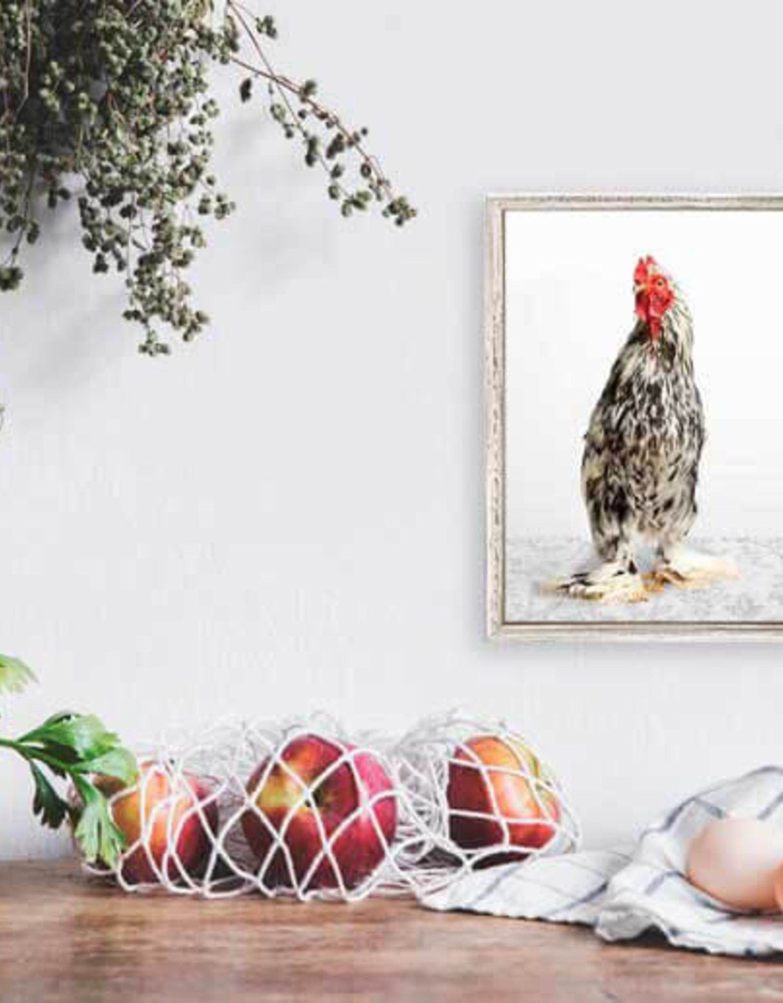 Greenbox Art Charming Chickens Blk/Wht Canvas