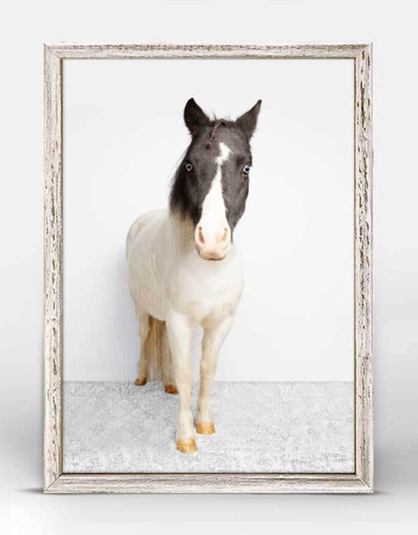 Greenbox Art Petite Ponies Chance Mini Framed Canvas