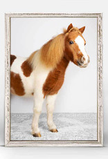 Greenbox Art Greenbox Petite Ponies Bailey Mini Framed Canvas