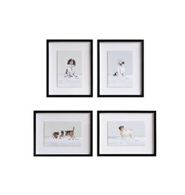 "Creative Co-Op 15-1/4""L x 12""H Framed Wall Decor w/ Dog, 4 Styles"