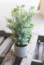 Kalalou Artificial Boxwood in a cement pot
