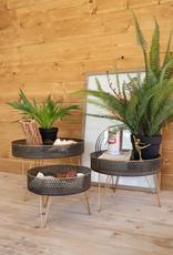 Kalalou Set of 3 Round Perforated Metal & Wood Risers
