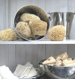 Barr-Co Sea Wool Sponge