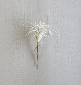 Kalalou White Air Plant Small