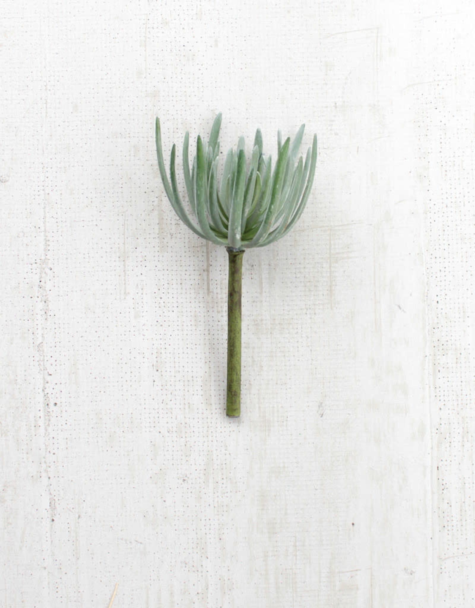 Kalalou Artificial Succulent Grey