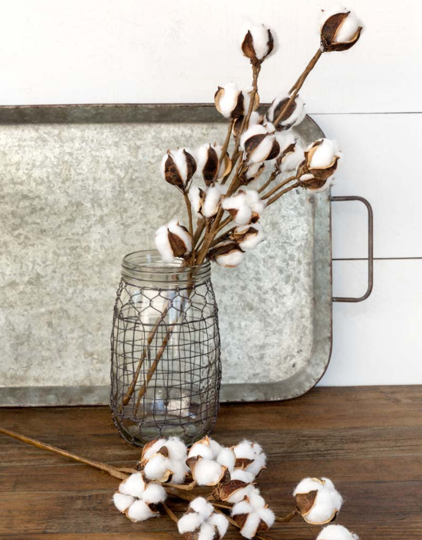 """Park Hill Collection Small Cotton Stem 20"""""""