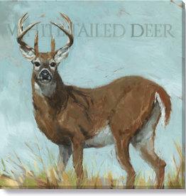 Sullivans White-Tailed Deer Giclee