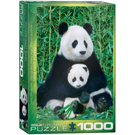 Eurographics Panda and Baby