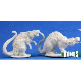 Barrow Rats (2)