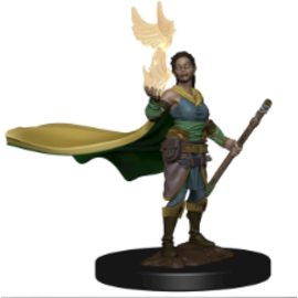Premium Figures: W1 Elf Female Druid