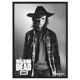 Walking Dead Carl Sleeves