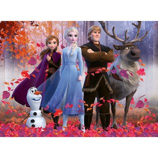 Disney Frozen Magic of the Forest