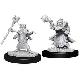 Gnome Male Wizard