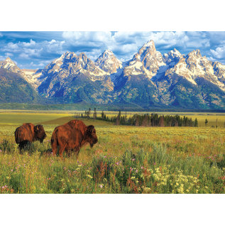 Eurographics Grand Teton National Park