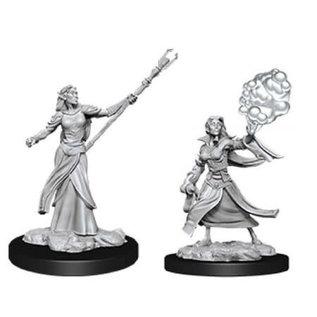 Female Elf Sorcerer