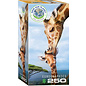 Eurographics Giraffes