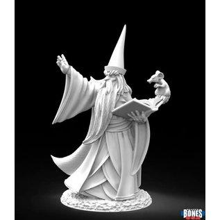Darius the Wizard
