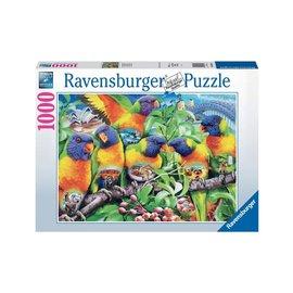 Ravensburger Land of the Lorikeet