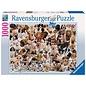 Ravensburger Dogs Galore!