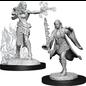 Multiclass Warlock Sorcerer Female