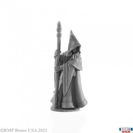Anirion, Elf Wizard