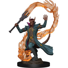 Premium Tiefling Male Sorcerer