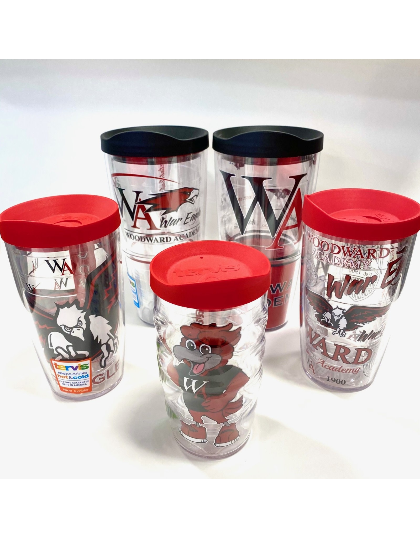 Tervis Tervis Tumbler with Lid  (assorted)