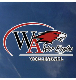 Color Shock Athletic Decal -  Volleyball